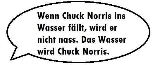 Die Besten Chuck Norris Witze